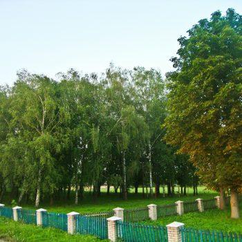 Смідинський парк